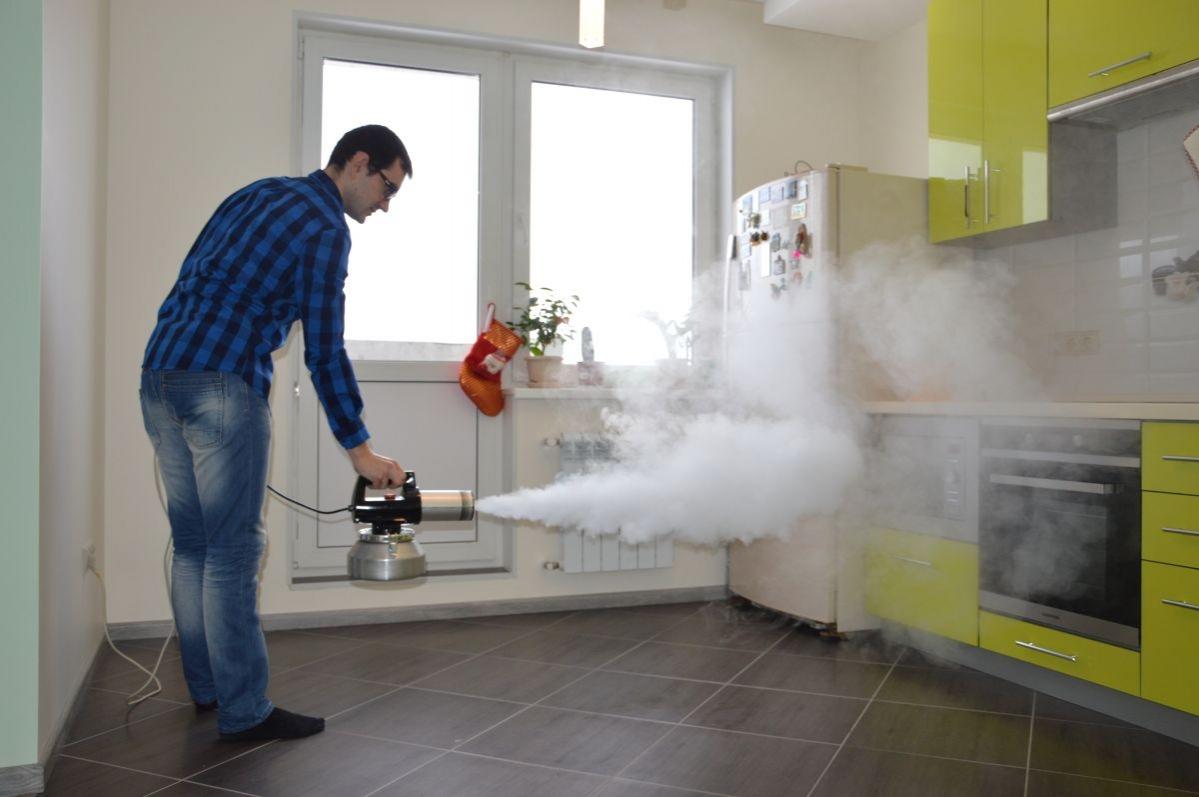 Сороконожки в квартире и причины появления: мухоловка, сколопендра домашняя, скутигера